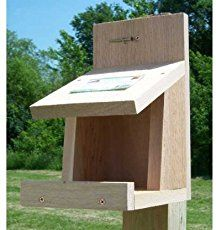 Free robin, phoebe and barn swallow nesting shelf and platform bird house plans that can be mounted under eaves or porch overhangs, etc. Easy to build and install.