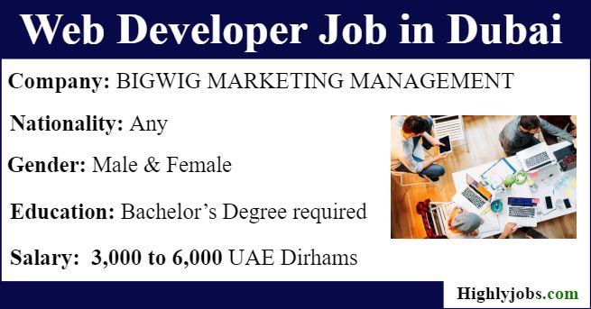Walk Interview In Dubai For Web Developer Job Web Development Development Dubai