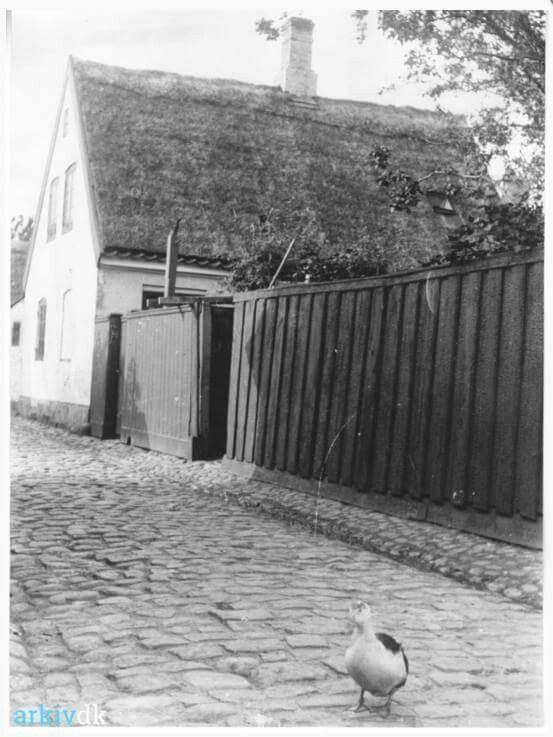 Strandstræde 32 i 1902 - Skomagermester Johan Petersens hus.