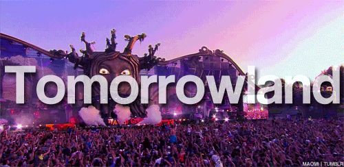 Belgica, festival, music, tomorrowland