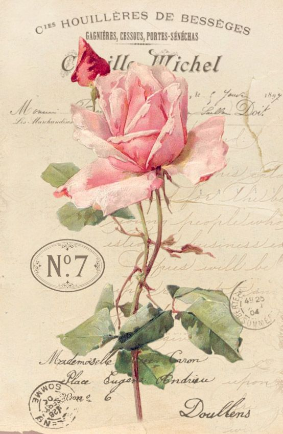 Pink rose on ad with postmarks.