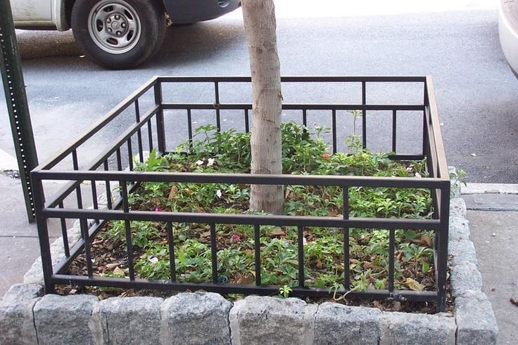 Wrought Iron Tree Fences Nyc Ornamental Iron Fencing