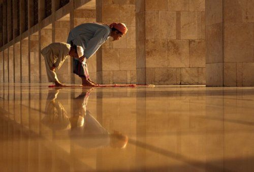 """""""Whoever humbles himself before Allah, Allah will elevate him.""""  Prophet Muhammad(SAW)"""