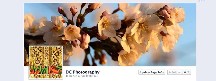 A guide to sizes, dimensions, and image types for Facebook Cover Photos.