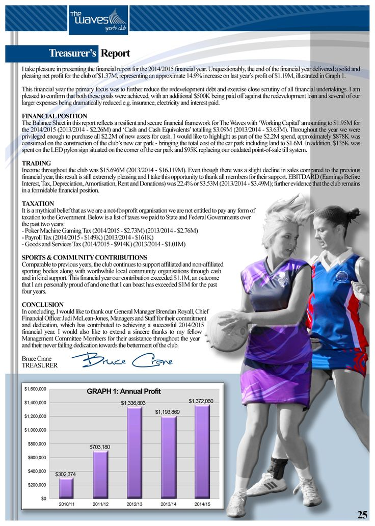 Annual Report Page 25 (Treasurer's Report). Would you like a design like this for your business? Email: art3sian@gmail.com