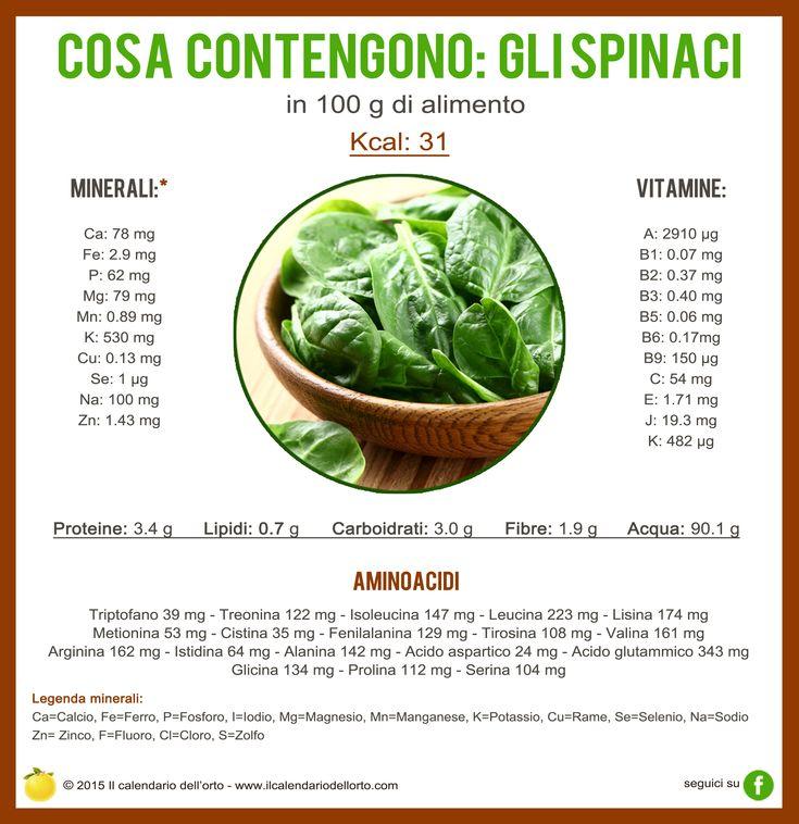 Cosa contengono gli spinaci