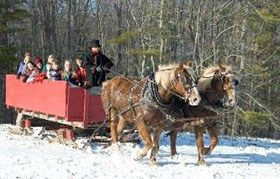 Harvest market hollis nh #corn #maze,nh,lee,new #hampshire,pumpkins,cornstalks,wagon #rides,sleigh #rides,lee, #nh,coppal #house #farm,horses,farm, #sleigh,snow,family,fun,sleigh #bells,outdoor #activities,beautiful,scenic,bonfire,cooking #oil,pasture #raised,meats,field #trips,schools,sunflowers,festival…