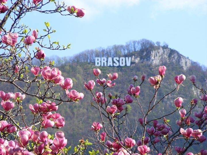 Brasov, Romania. Mile and a half hike to the sign then you get the most spectacular view of the entire city!!! April 2014.
