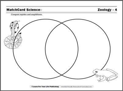 Venn Diagrams 1st Grade Science Wiring Diagram Portal