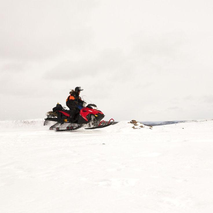 Suomen talvi on parhaimmillaan maagista aikaa, ja missään muualla et koe talven henkeä paremmin kuin Lapissa. Siellä luonto on kauneimmillaan ja lumitakuu satavarma. Tämä lumisissa tuntureissa tehtävä safari yhdistääkin Suomen talven parhaimmat aktiviteetit, moottorikelkkailun ja pilkkimisen. Viiden tunnin reissulla ajetaan kelkoilla, kairataan järven jäähän pilkkireikä ja paistetaan makkaraa – ehkä myös tuoretta kalaa. Erinomainen elämys esimerkiksi ulkomaiselle vieraallesi – tilaa nyt…