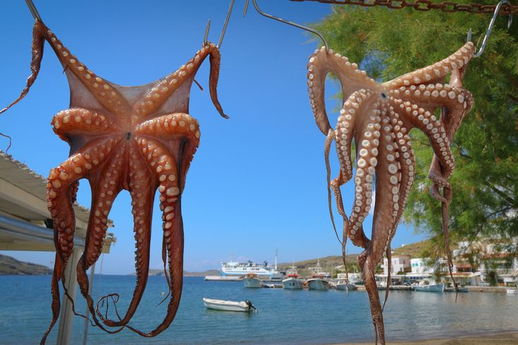 Kythnos is a relaxing Greek island with around 100km of coastline, and more than 70 beaches, many inaccessible by road. It is not slathered with tourists like Santorini. It's a completely different experience. And, like me, you may lose a piece of your heart when you visit. Come along and visit Kythnos with us.