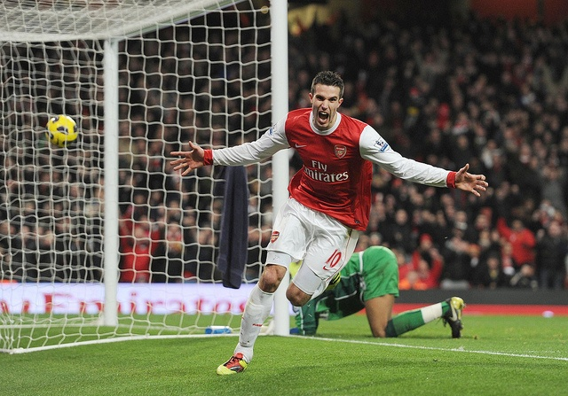 Robin van Persie celebrates scoring his 3rd goal