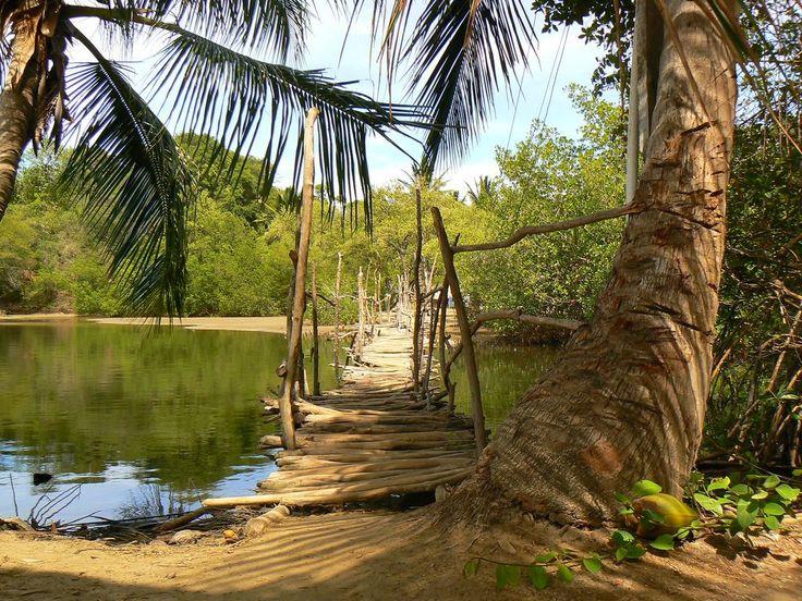 Een rondreis Dominicaanse Republiek is perfect voor iedereen die van natuur, cultuur en lekker weer houdt! De Dominicaanse Republiek bevindt zich op het Hispaniola. Ongeveer tweederde van dit eiland bestaat uit de Dominicaanse Republiek, het andere deel is Haïti.