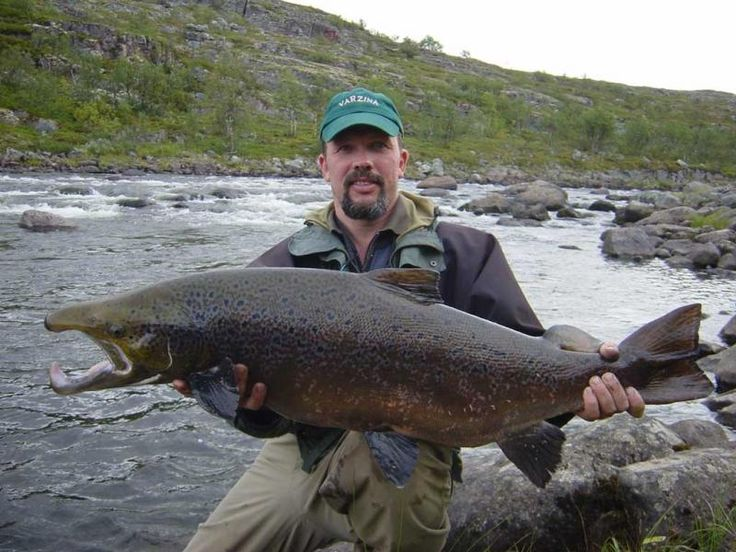 how to fly fish for salmon
