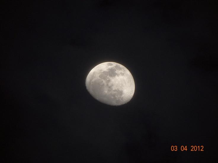 my moon: Moon