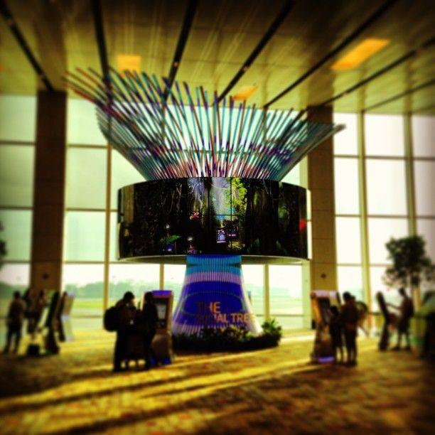 Singapore Changi Airport (SIN) in Changi Village