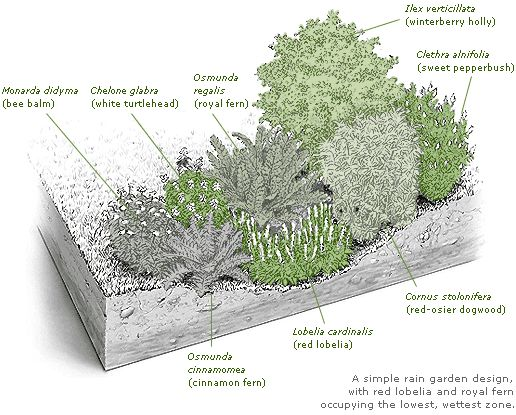 Rain Garden Design rain gardens in howard county md Best 25 Rain Garden Ideas On Pinterest