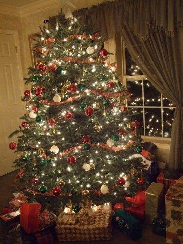 List of live christmas trees central coast