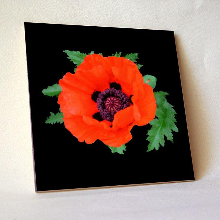 Poppy ceramic tile, floral trivet, orange flower photo, cottage garden oriental poppy flowers, flower photo, cottage garden, wall tile 1280 by RVJamesDesigns on Etsy