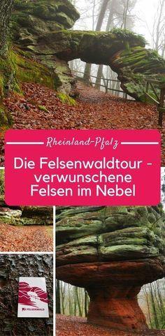 Tour de forêt rocheuse dans le Palatinat: rochers dans la brume près de Pirmasens   – tripps