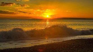 """Τα συναισθήματα είναι σαν τα κύματα: Δεν μπορείς να κάνεις κάτι για να μην έρθουν, αλλά μπορείς να επιλέξεις σε ποιο θα σερφάρεις...  Έτσι και η αγάπη! Δεν υπάρχει τίποτα πιο σπουδαίο από το να έχεις ένα σύντροφο για να μοιραστείς όλα όσα βιώνεις στην καθημερινότητα σου. Βρες το δικό σου ... """"κύμα"""" και απόλαυσε το!   www.oneplusone.gr"""