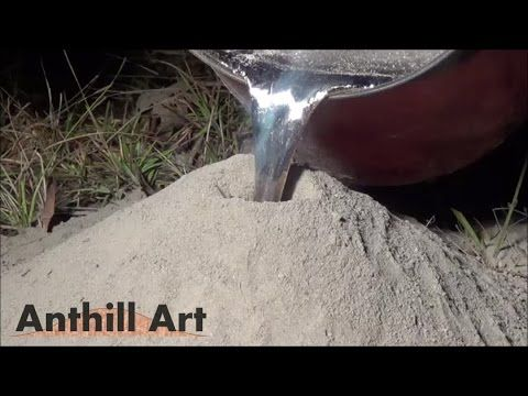 Video: Fire-ant colony + molten aluminum = incredible art | 						NOLA.com