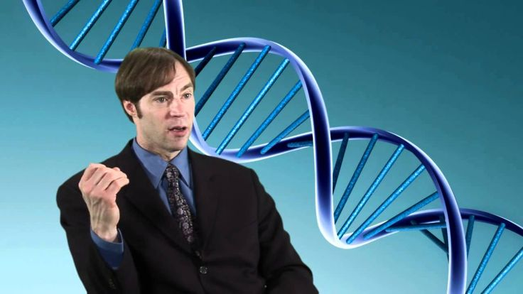Honnan származik a DNS molekulában lévő digitális információ?