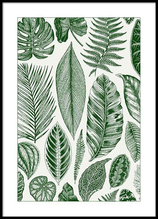 Green Leaves Poster in de groep Posters / Botanisch bij Desenio AB (8782)