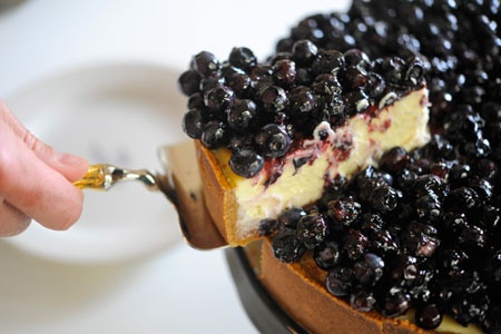 Antioksidanlı Cheesecake - Yabanmersini tadın!