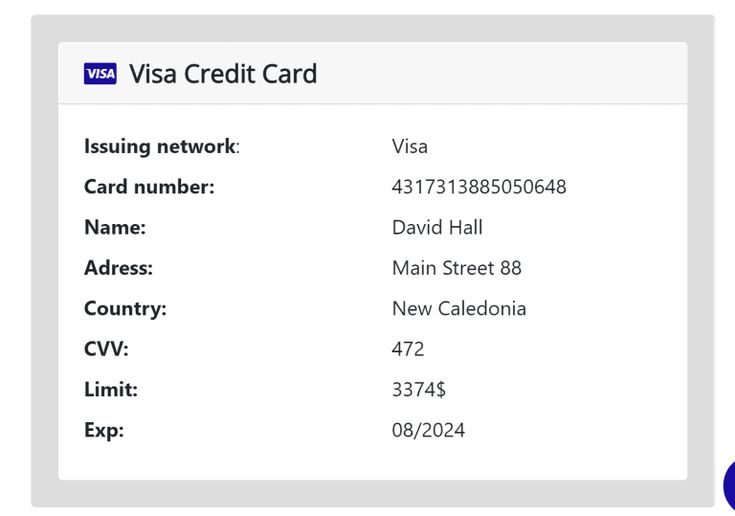 Free credit card info with money in 6 - Beginners guide to
