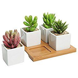 Best 20 Planters For Sale Ideas On Pinterest Window