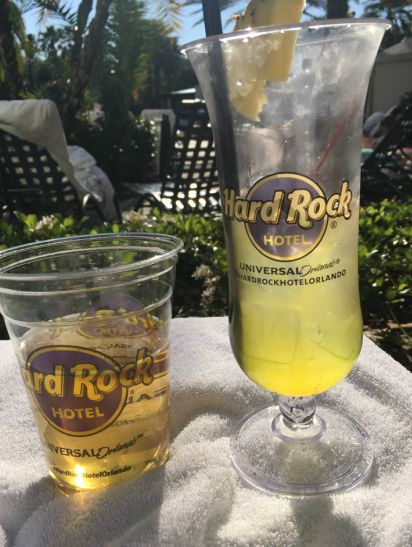 All You Need to Know About Staying at the Hard Rock Hotel Universal Orlando - A Personal Guide