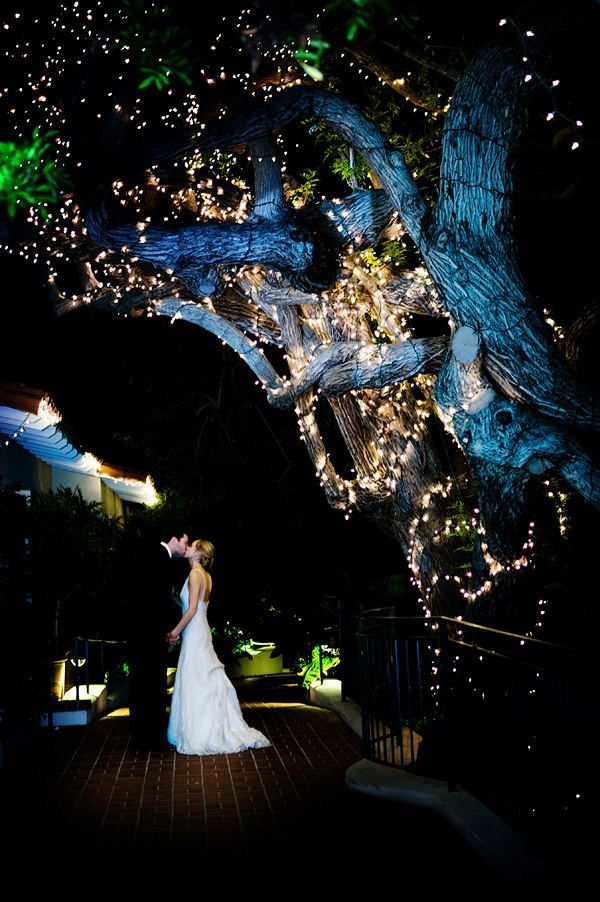 outdoor evening weddings | Love the lights! I want an outdoor evening wedding with twinkle lights