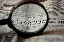 Apigenin and Prostate Cancer - recently published 6 articles | Apigenin Research News - Science