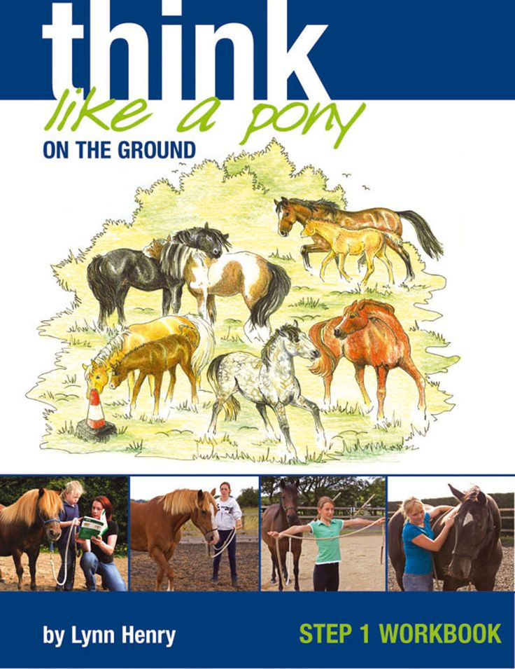 Think Like a Pony on the Ground Step 1 Workbook by Lynn Henry | Quiller Publishing. Think Like a Pony on the Ground Step 2 Workbook by Lynn Henry | Country Books Direct. All pony-mad people want a pony who has perfect manners, is confident, happy and above all, safe. these four practical and fun books, based on understanding pony behaviour, are packed with imaginative exercises and are illustrated with drawings and photographs to help. #horse #pony #training #riding #behaviour #safety