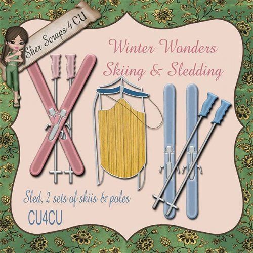 Winter Wonders_Skiing & Sledding