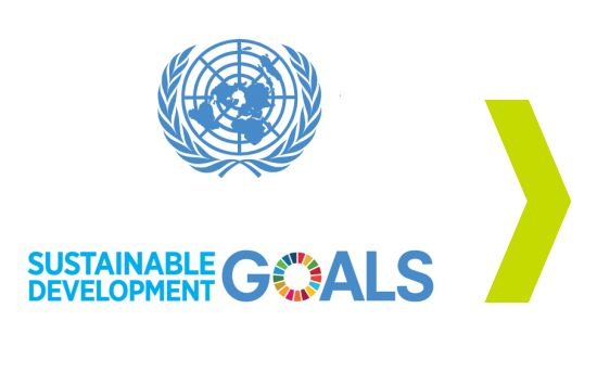 How to Use the UN #SDGs for Corporate Impact
