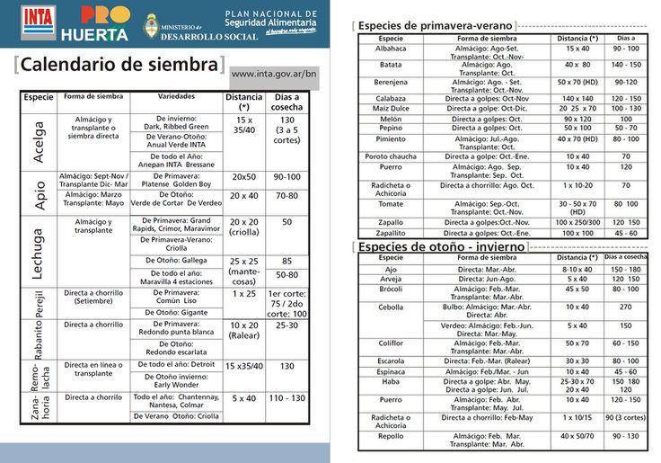 Calendario de siembra en Argentina - Huertas y Jardines