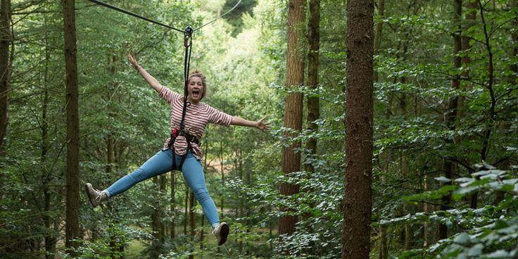 Travelzoo: 101 Things to do in The Lake District -- 100: Go Ape at Whinlatter Mountain Forest - Zip-slide your way through the sky & over water