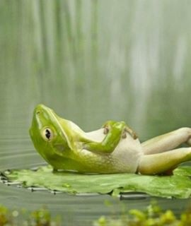 """Relax & Refresh  """"Sometimes I sits and thinks, and sometimes I just sits."""" Satchel Paige"""
