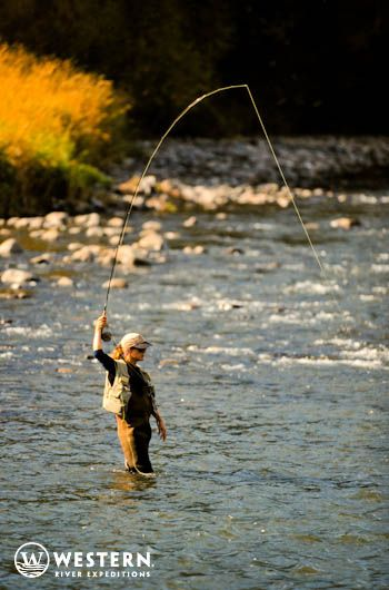 17 best images about idaho middle fork salmon river for Best fly fishing raft
