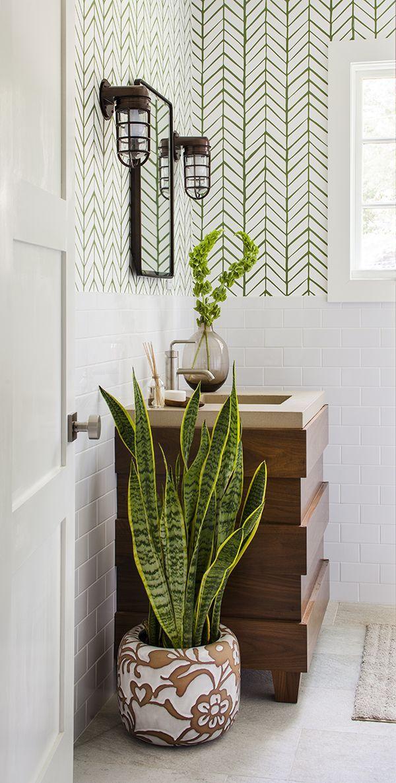 EN IMAGES. 6 plantes à faire pousser dans une salle de bains