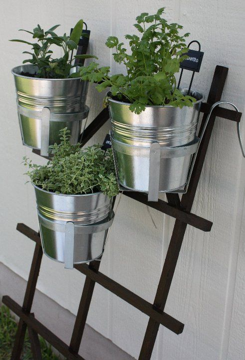 Non-permanent DIY hanging herb garden using trellis from Home Depot and pots from Ikea.