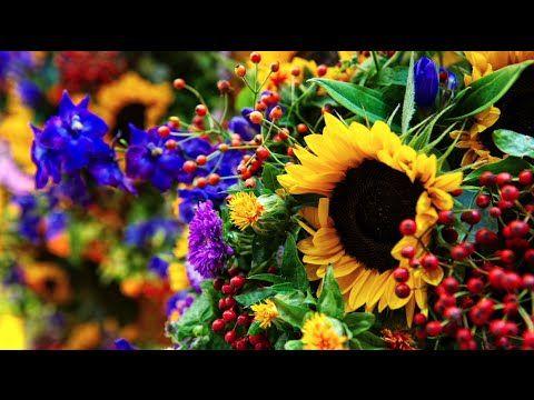 Summerflowers - Impressie Alden Biesen, Belgie 2014