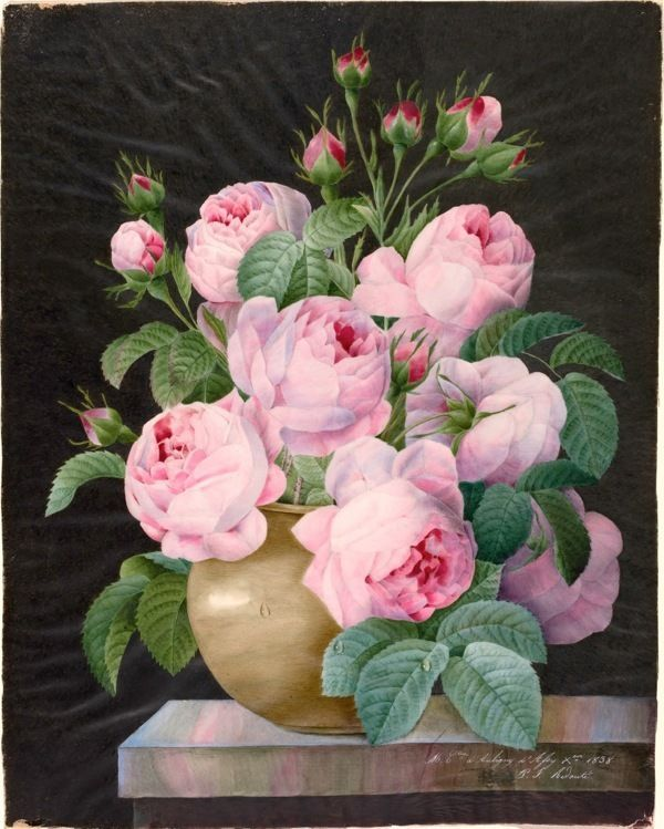 BIG BLOOMING PINK ROSES FLOWERS IN A VASE PAINTING ART REAL CANVAS GICLEEPRINT #Realism