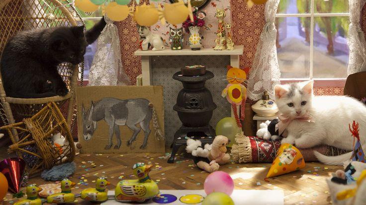 http://www-assets.npo.nl/uploads/media_item/media_item/106/20/feest_6_carousel_medium-1461154816.jpg