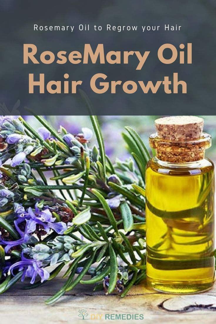 How to use Rosemary Oil for Hair Growth    Know how to use Rosemary oil for healthy hair growth. You should use it on daily basis by starting it in small doses to get rid of hair fall.  #DIYRemedies