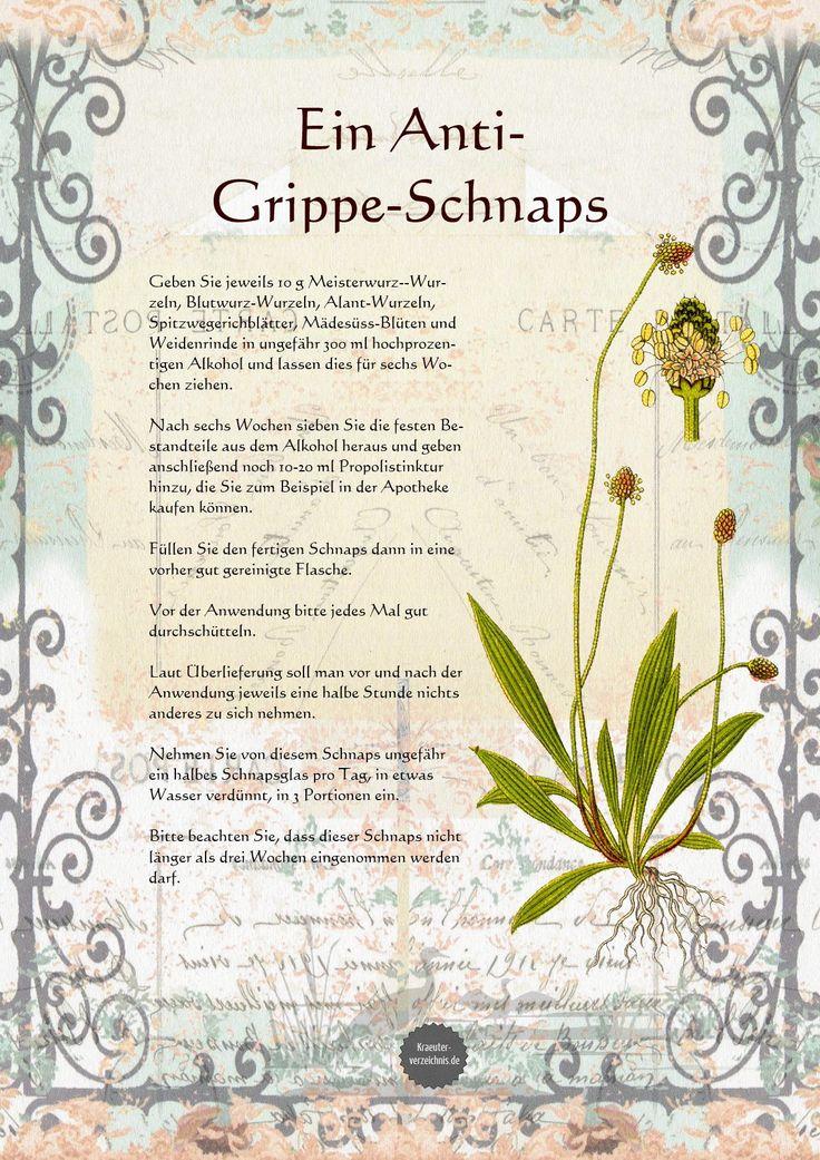 Anti-Grippe-Schnaps.jpg (1240×1754)