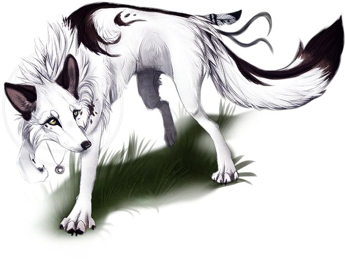 gene white and black male wolf is kind loyal and is a total flirt with all the she wolves