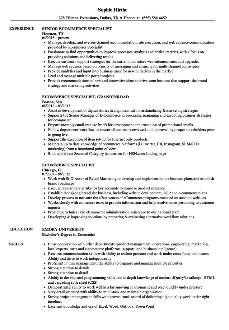Ecommerce Resume Formats Project Manager Resume Job
